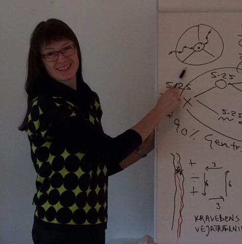 Workshop Kurser. Skole. Uddannelse. Tanke-Feltet. Jette K. Mortensen. Alternative Behandlere Net